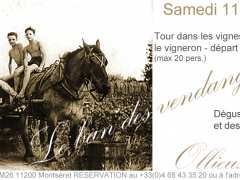 picture of Le ban des vendanges