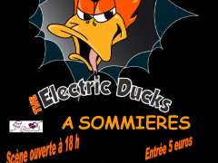 picture of Scène ouverte et Concert THE ELECTRIC DUCKS