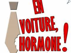 picture of EN VOITURE HORMONE